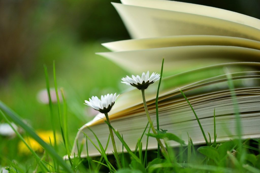 敏感すぎて生きづらい人の明日からラクになれる本のまとめ