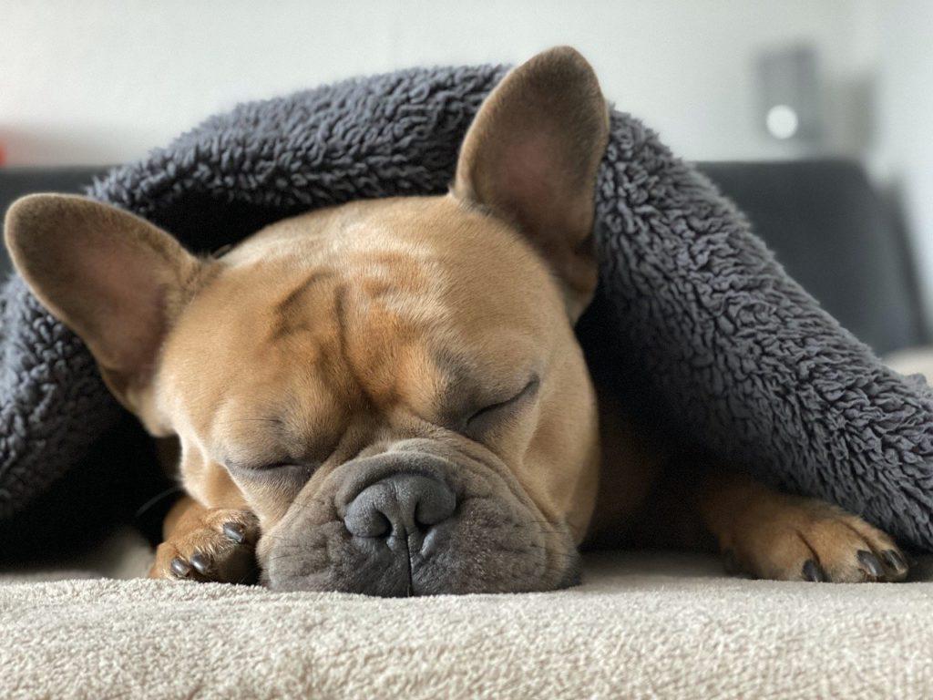 睡眠とストレスの関係