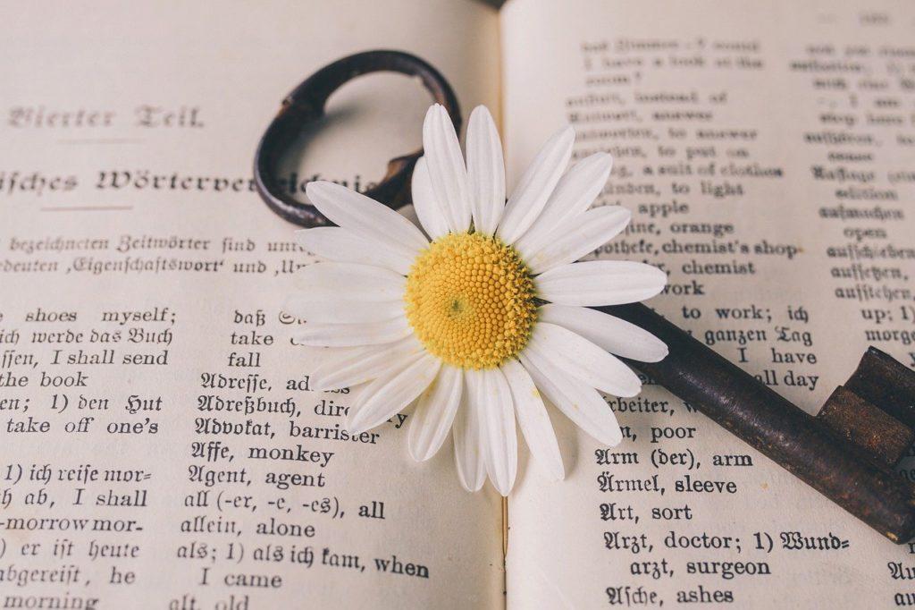 耳の調子が悪い時に読む本のまとめ